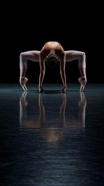 """""""La danza es la madre de las artes. La Música y la poesía existen en el tiempo; la pintura y la arquitectura en el espacio. Pero la danza es la única que vive el tiempo y el espacio""""-Curt Sachs"""