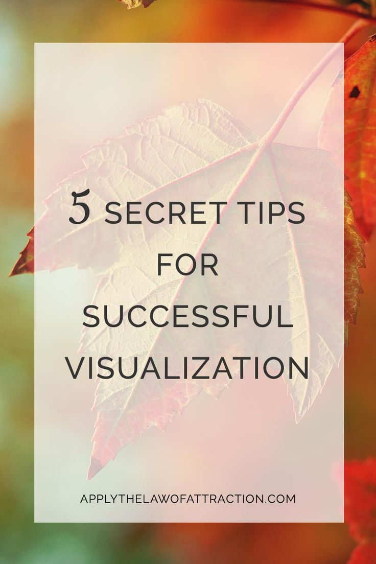 Visualization Law of Attraction: Successful visualization is a key Law of Attraction technique. Learn secret tips to use visualization successfully and speed up your manifesting results.