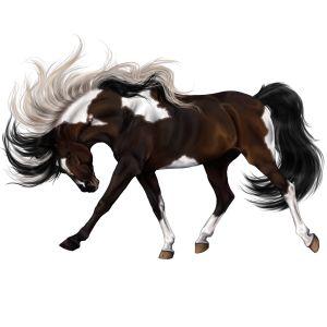 Running free, Pegasus Englisches Vollblut Hellgrau #48633637 - Howrse