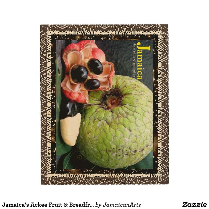 Jamaica's Ackee Fruit & Breadfruit Wood Wall Art 4