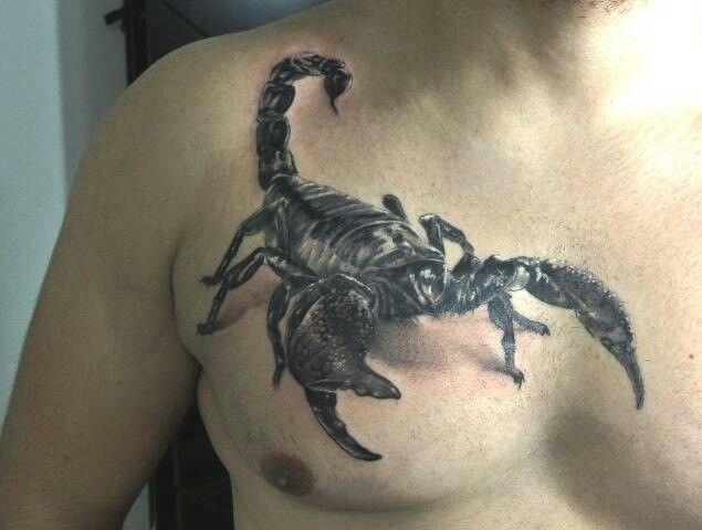 64 best images about tatouages scorpions on pinterest. Black Bedroom Furniture Sets. Home Design Ideas
