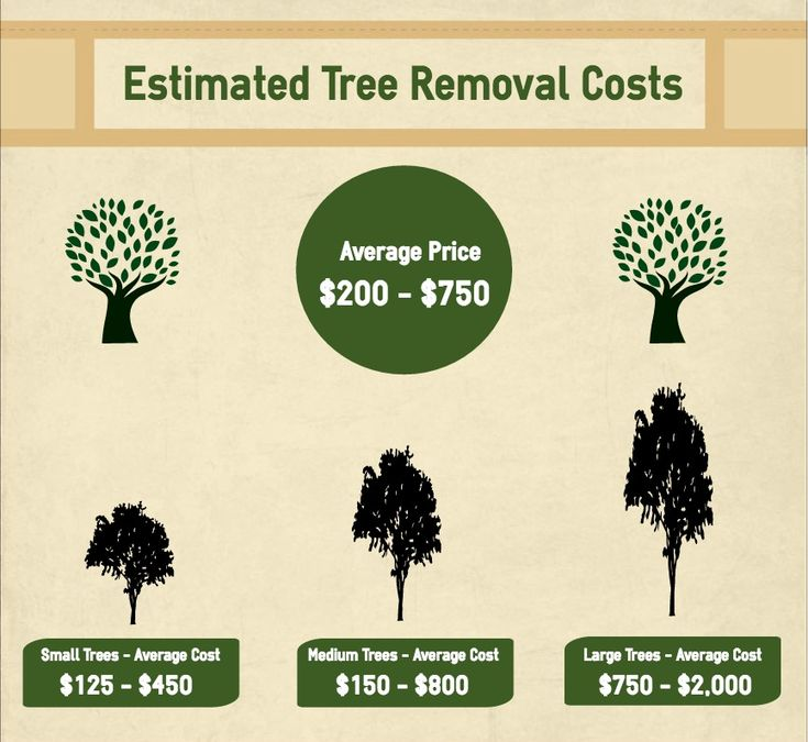 Things About Tree Services Johns Creek