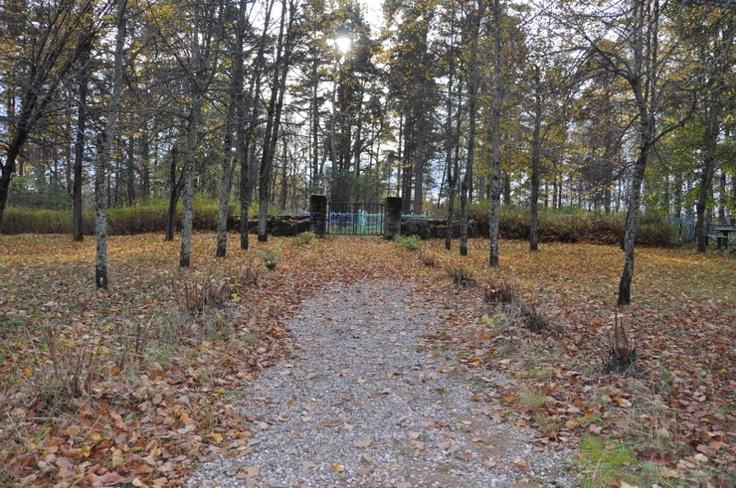 Uudenkirkon hautausmaalla Rauhan viita -puistossa lokakuussa 2012 Kuvaaja: Outi Grusander