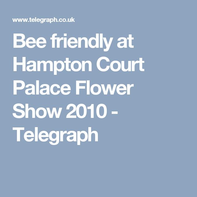 Bee friendly at Hampton Court Palace Flower Show 2010  - Telegraph