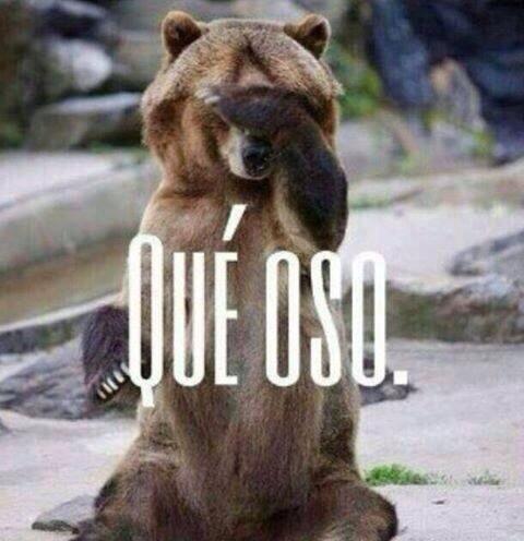 Oso polar goeeeyy http://www.gorditosenlucha.com/
