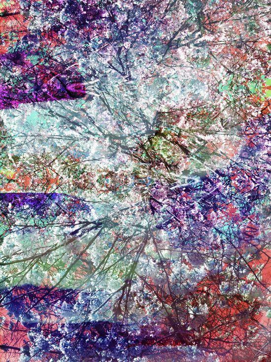 Technicolor, by Amy Sia.