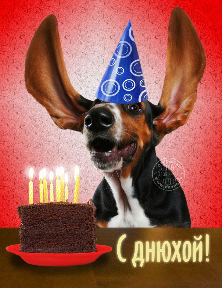 Поздравление с днем рождения стафф