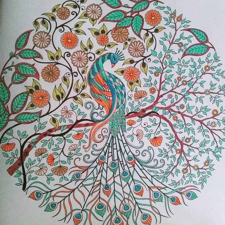 """#paw #peacock #colorful #colors #coloringbook #tajemnyogród #kolorowanka #secretgarden #johannabasford #orange #blue #green #brown #plants #flowers…"""