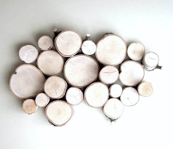 White Birch Forest Topography Uncovet ...under100