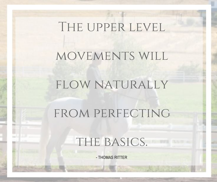 """""""The upper level movements will flow naturally from perfecting the basics."""" - Thomas Ritter  Have you joined our newsletter? http://eepurl.com/bYdIm5"""