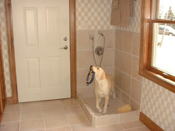 8 best dog wash images on pinterest laundry room animales and pets name dogwashg views 999 size 311 kb solutioingenieria Choice Image