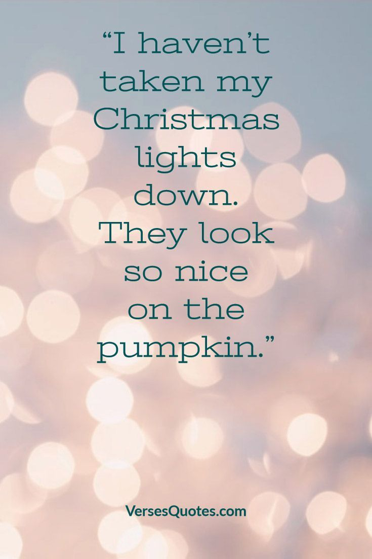 Funny Christmas Quotes 2020