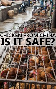Dr Oz is angry at the fact the USDA wants to begin sending U.S.-raised chicken to China for processing. Learn all you need to know to protect your family!