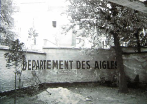 Marcel Broodthaers, 'Musée de l'art Moderne, Départment des Aigles' (1968) In 1968, the Belgian artist Marcel Broodthaers created an install...