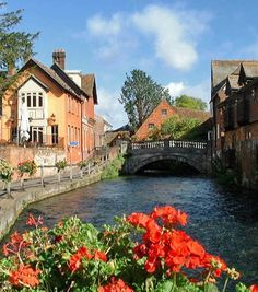 River Itchen, Winchester. One of my favourite walks is from St Cross along the water meadows and into the city along this path.