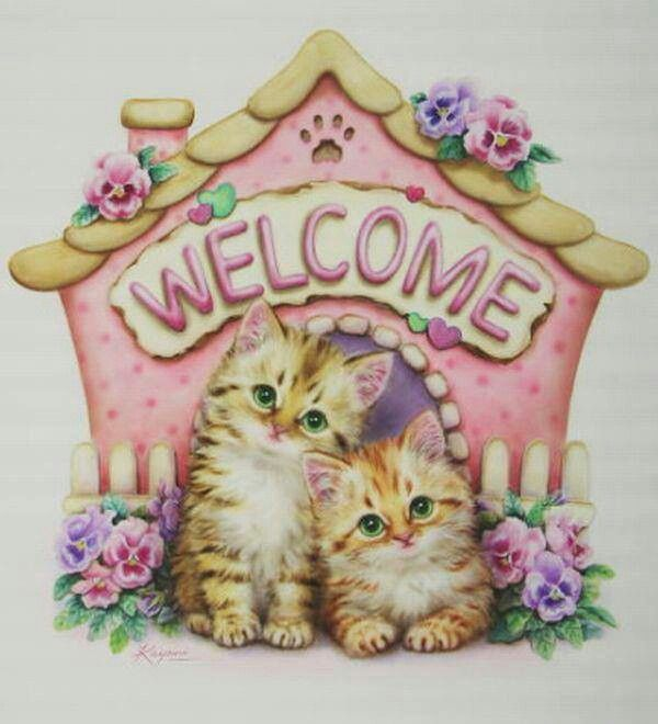 Welcome! Relax, Enjoy!