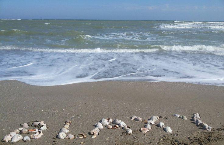 In aceasta vara asezam o noua statiune pe harta litoralului romanesc, cu servicii si facilitati premium, la fel ca cele din strainatate. Rezerva-ti si tu casa de vacanta la Blaxy Resort si te vei trezi, in fiecare dimineata, in acest loc de vis.