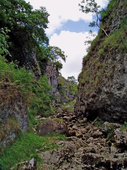 Trollers Gill, Appletreewick, Wharfdale, Yorkshire Dales, England