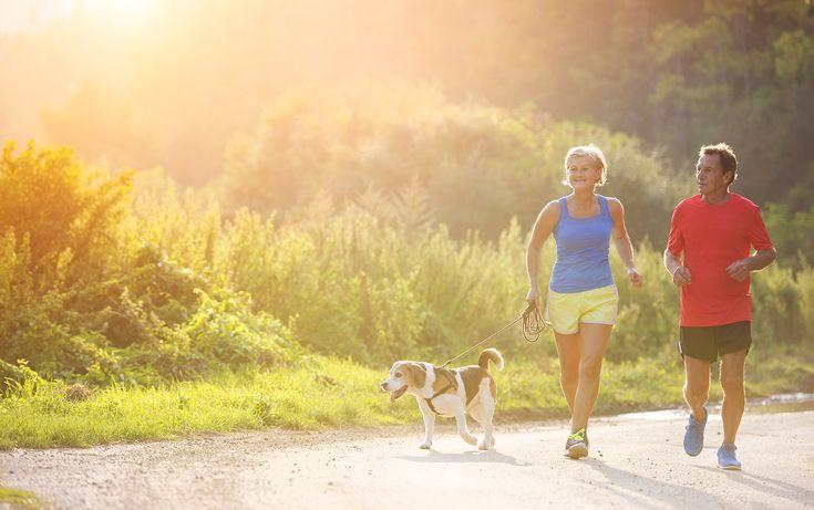Hoe onderhoud je een gezonde #cholesterol?