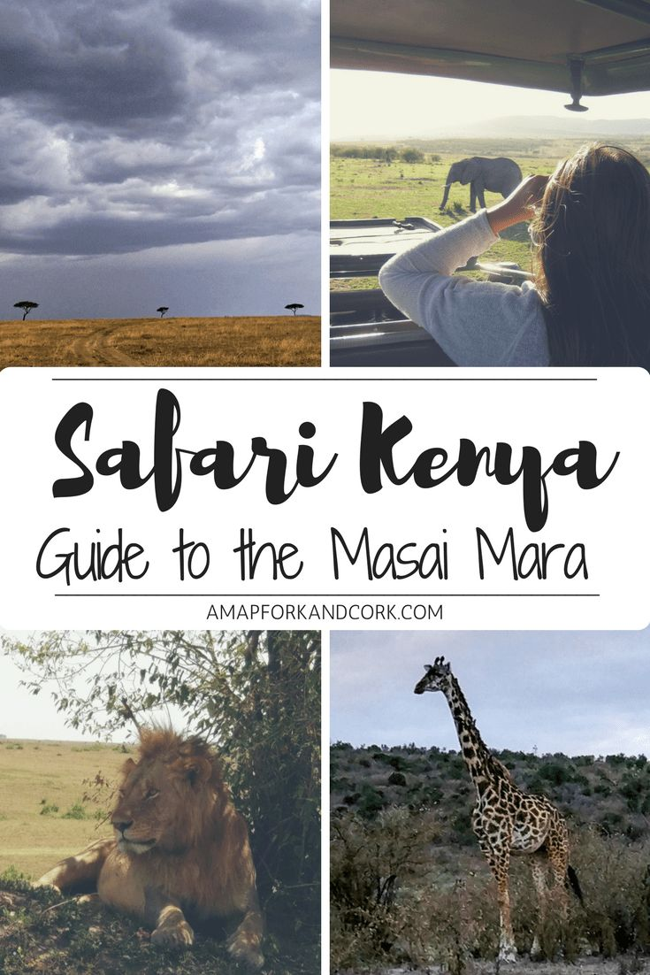 How to Plan an Amazing Kenya Budget