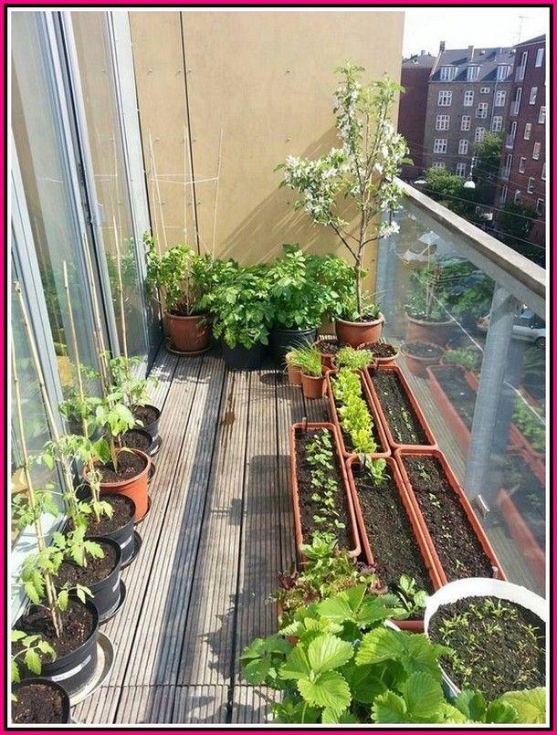 small balcony garden balcony herb