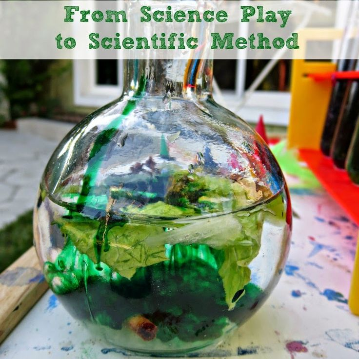 Books and activities to move from science play to scientific method