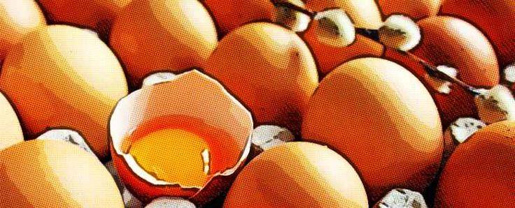 Las proteínas del huevo y su valor nutricional  http://www.infotopo.com/salud/nutricion/proteinas-del-huevo/