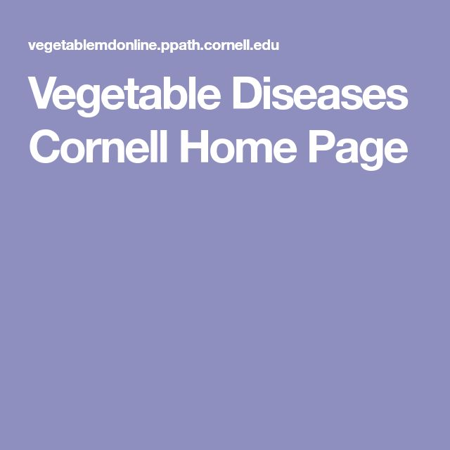 Vegetable Diseases Cornell Home Page