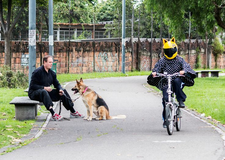 Cat and Dog #Cat #Perro #Gato #Dog #Bicycle #Celty #Park #Parque #Bici