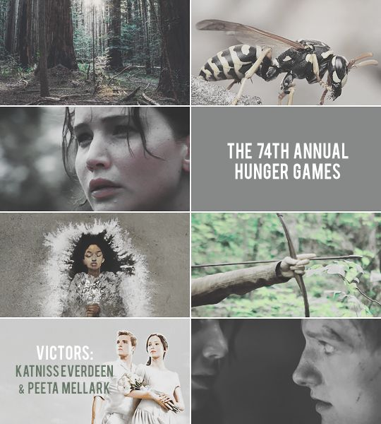 Rue, Racism, & Reading: Using The Hunger Games to Talk About Comprehension Skills