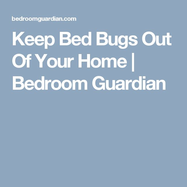 Keep Bed Bugs Out Of Your Home | Bedroom Guardian