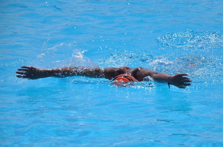 nadador, natación, competición, carrera, brazada, gorro, 1707250811