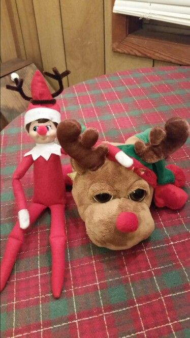 Jack's 24th night, decided to dress up like his pal Rudolph!