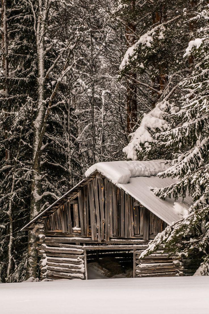 Lato Finland