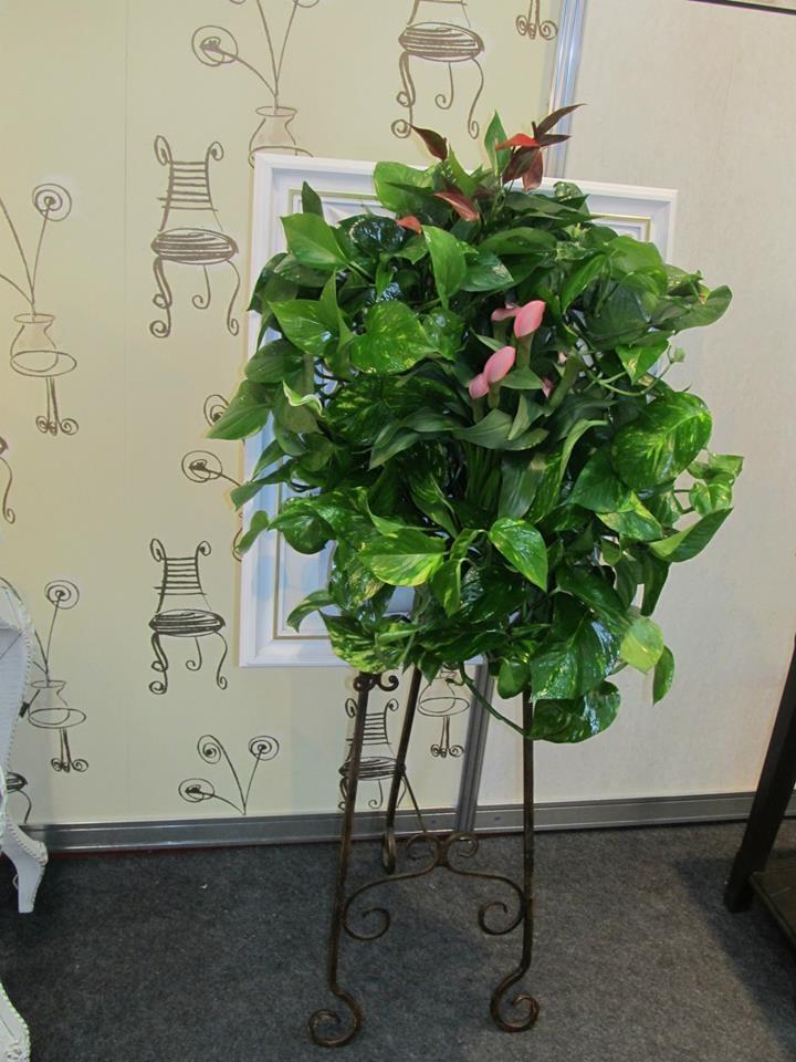 Tablou vegetal Green Walls într-un decor de poveste la standul editurii Baroque Books & Arts, Bookfest 2013