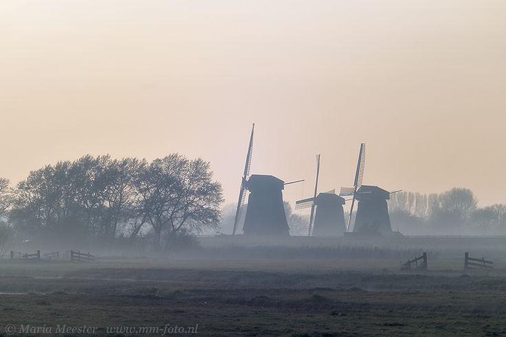 Windmills in the Eilandspolder