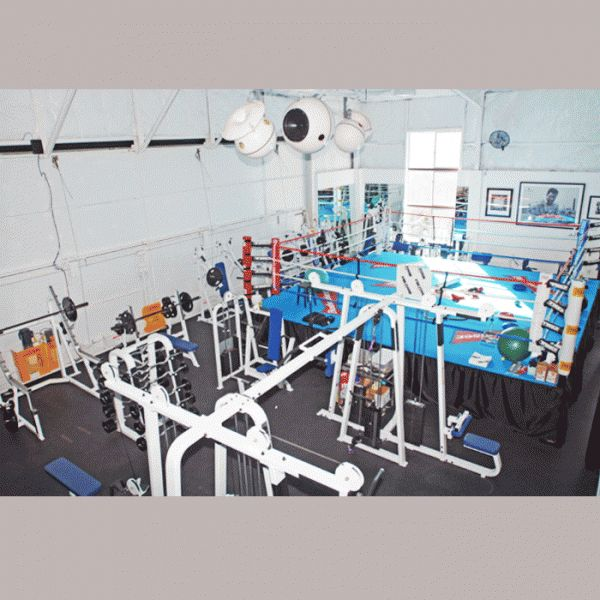 Mark Wahlberg had a boxing ring in his Beverly Hills, CA home gym where he trained for the movie The Fighter.
