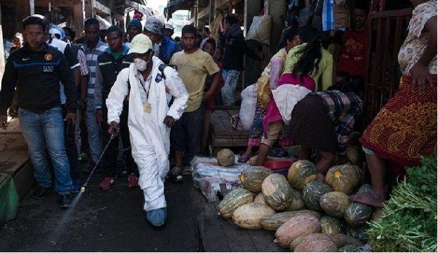 Afrika'da ortaya çıkan Kara Veba salgını, şu ana kadar yaklaşık 1300 kişiye bulaştı.