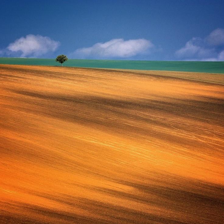 South Moravia by Tomáš Morkes #minimal #photography