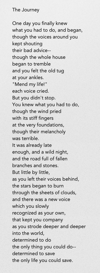 """""""One day you finally knew what you had to do, and began..."""" The Journey by Mary Oliver"""