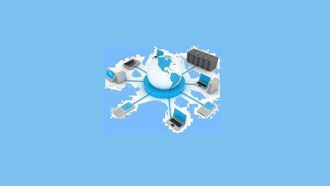 Oracle Database, SQL, PL/SQL, Forms&Reports Builder 6i