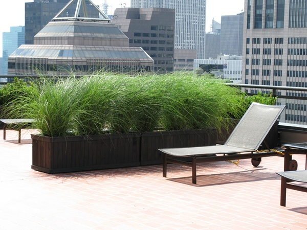 1000 images about roof top gardens on pinterest roof for Roof terrace definition