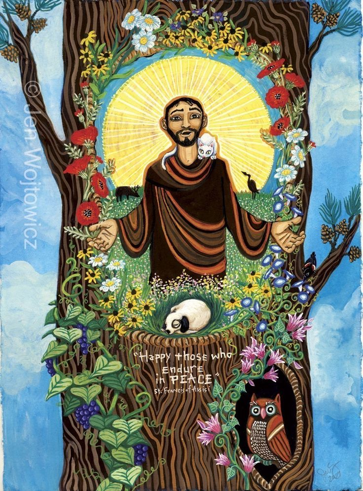 francis of assissi Read the first chapter of saint francis of assisi's life story, captivatingly written in  biographical novel form by best-selling author elizabeth goudge.