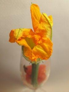 Kwiaty cukinii z farszem z bryndzy, mięty, czosnku i skórki z pomarańczy