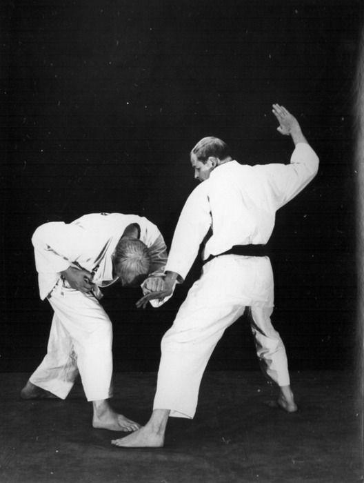 Rinus Schulz Kyokushinkai karate shuto