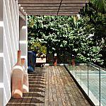 Casal de arquitetos monta uma floresta tropical no jardim de casa