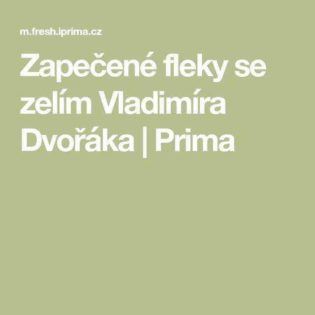 Zapečené fleky se zelím Vladimíra Dvořáka   Prima