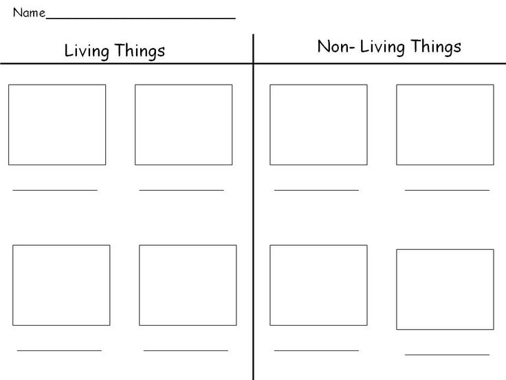 Living and Non Living Activity   is an easy and fun way to see who understands living and non-living ...