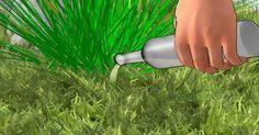 Vinagre – um poderoso herbicida natural. Veja como ele pode salvar suas plantas!