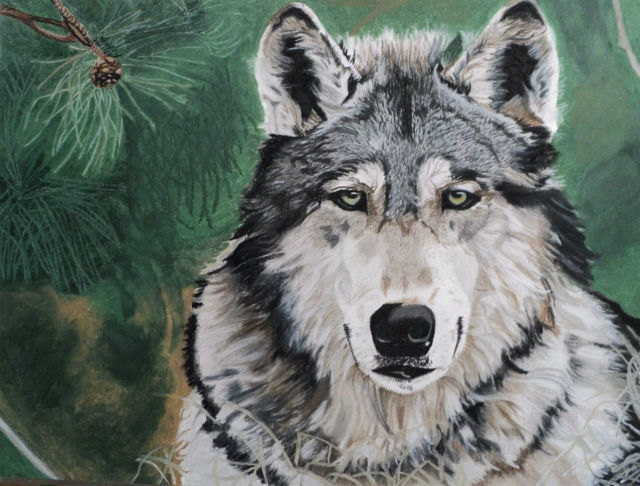 Wolf pastel drawing by DeniSchuetzDesigns on Etsy | Wolves ...